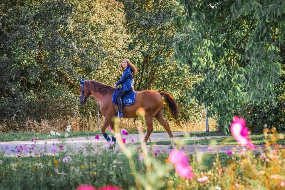 Claudia Sittig Photography - Pferd - Pferdeshooting - Horse 00