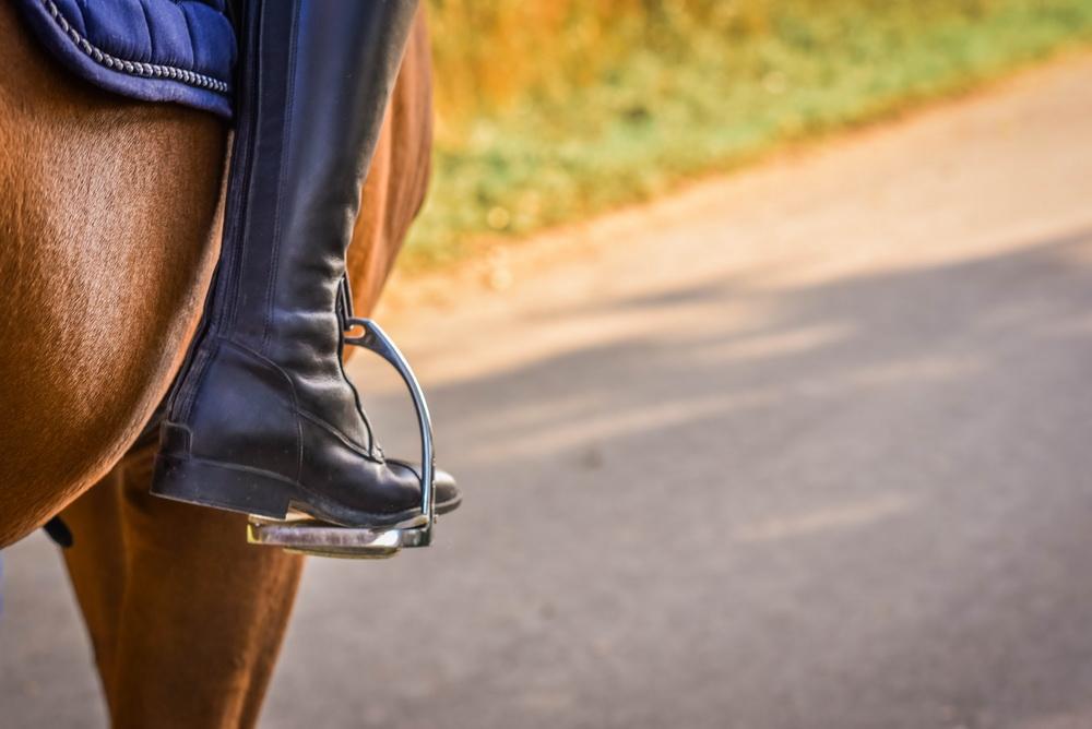 Claudia Sittig Photography - Pferd - Pferdeshooting - Horse 11