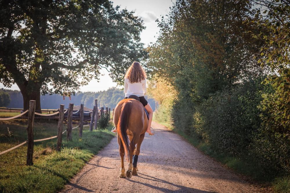 Claudia Sittig Photography - Pferd - Pferdeshooting - Horse 30
