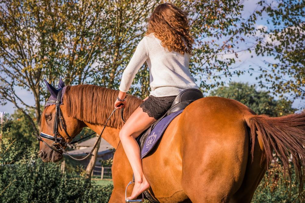 Claudia Sittig Photography - Pferd - Pferdeshooting - Horse 31