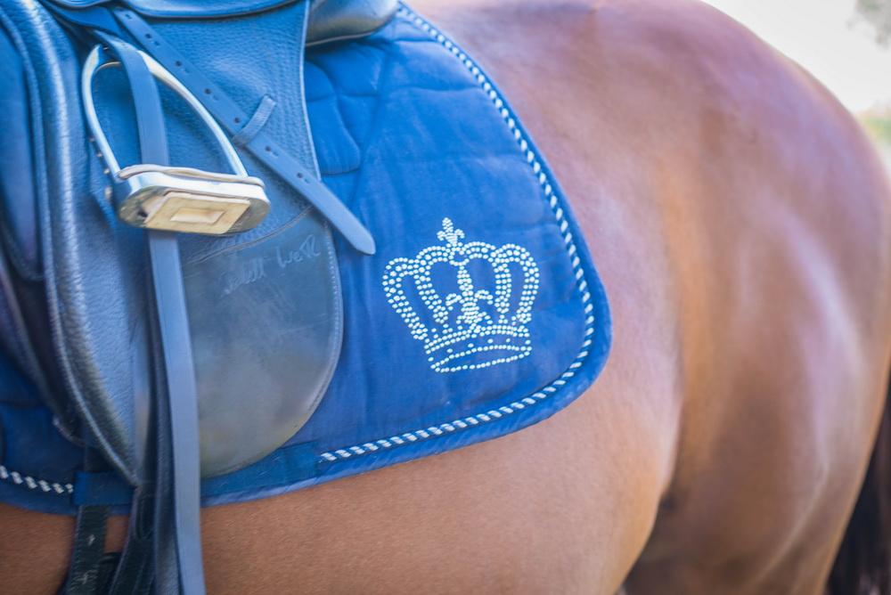 Claudia Sittig Photography - Pferd - Pferdeshooting - Horse 48