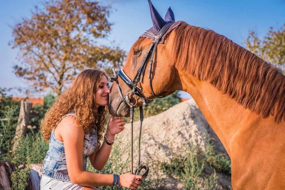 Claudia Sittig Photography - Pferd - Pferdeshooting - Horse 57