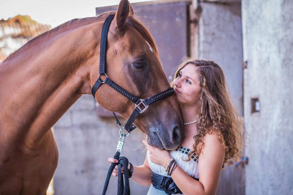 Claudia Sittig Photography - Pferd - Pferdeshooting - Horse 60