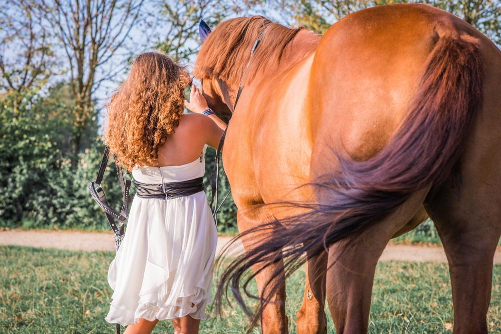 Claudia Sittig Photography - Pferd - Pferdeshooting - Horse 61