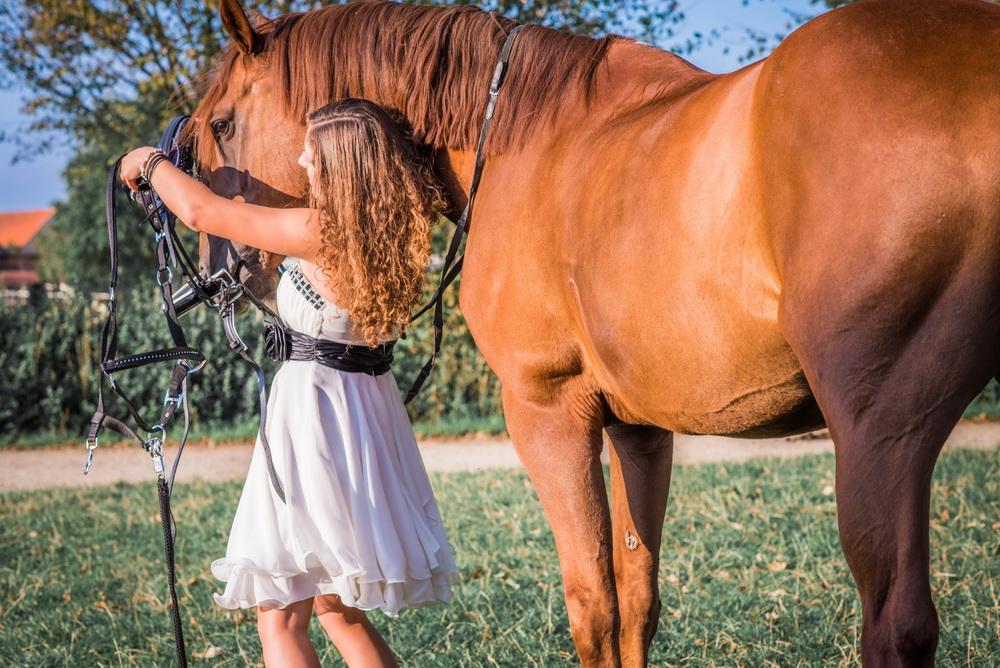 Claudia Sittig Photography - Pferd - Pferdeshooting - Horse 62