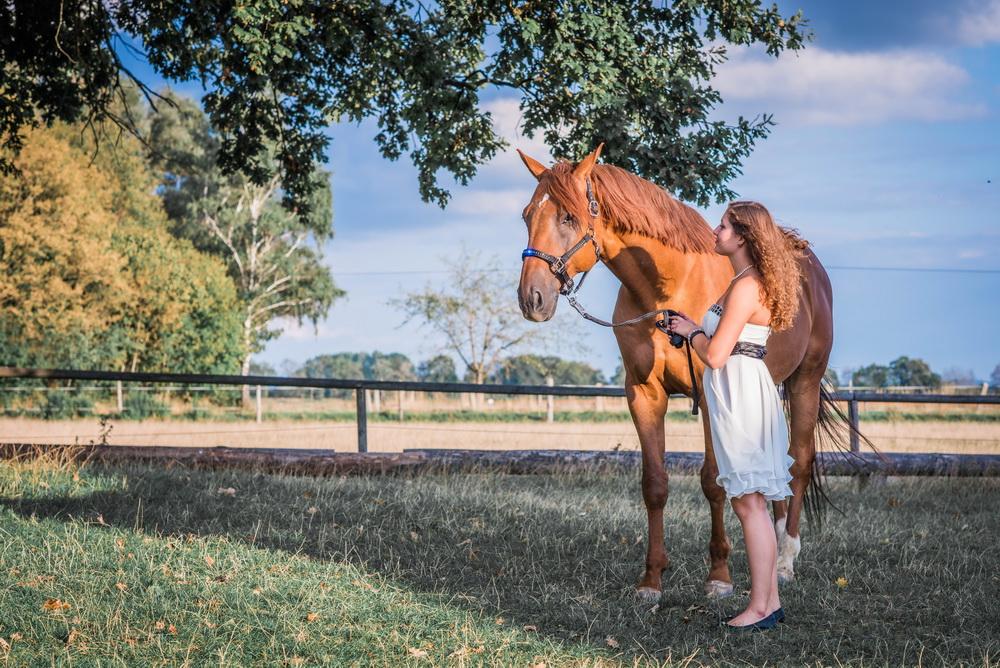 Claudia Sittig Photography - Pferd - Pferdeshooting - Horse 67