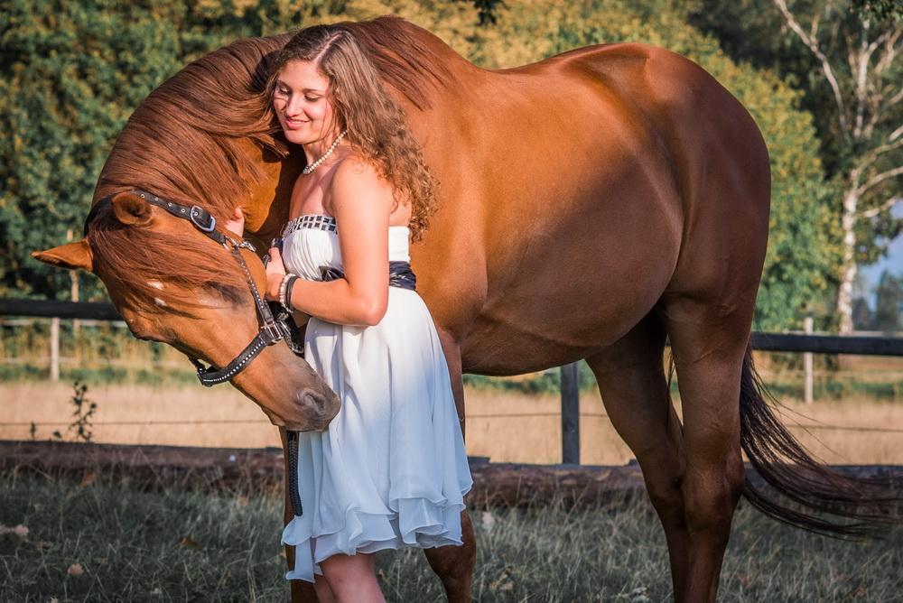 Claudia Sittig Photography - Pferd - Pferdeshooting - Horse 68