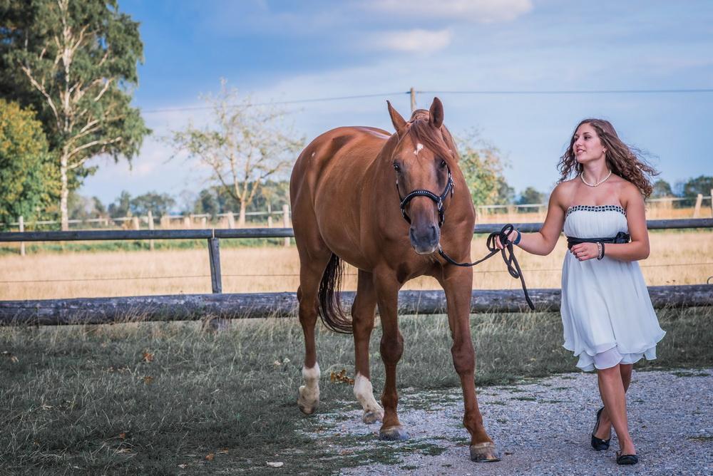 Claudia Sittig Photography - Pferd - Pferdeshooting - Horse 69