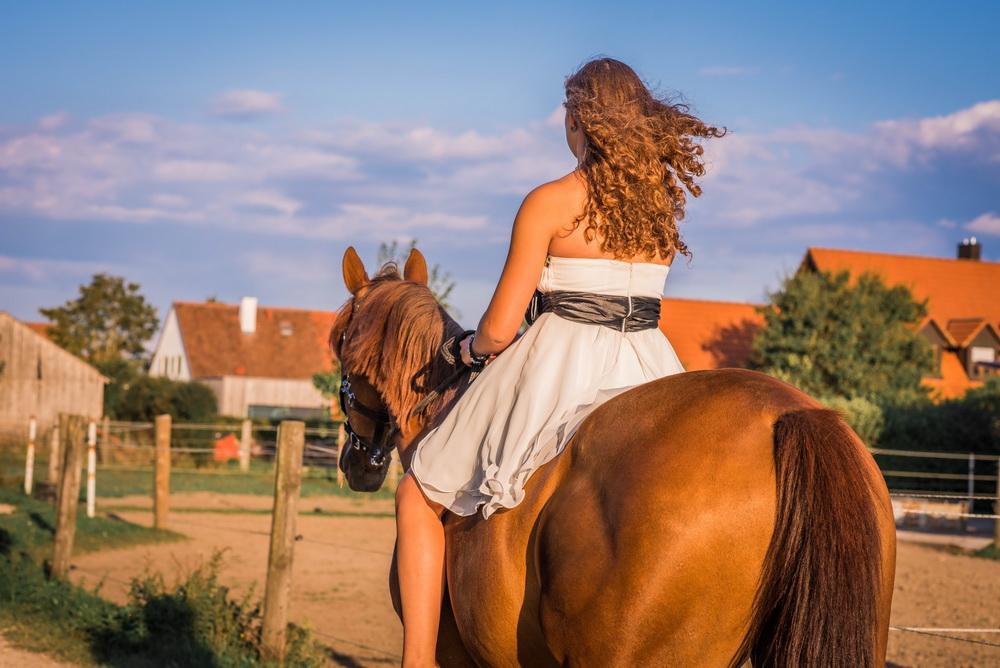 Claudia Sittig Photography - Pferd - Pferdeshooting - Horse 73